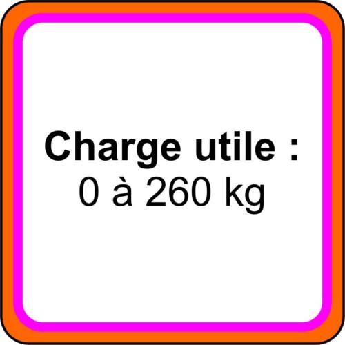 9 icone - Charge utile 1